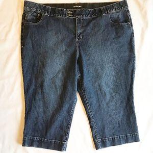 Lane Bryant Size 28 Dark Wash Jean Shorts